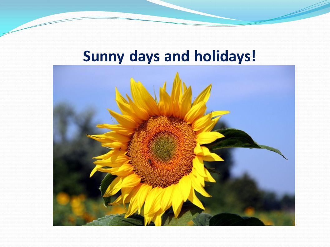 Sunny days and holidays!