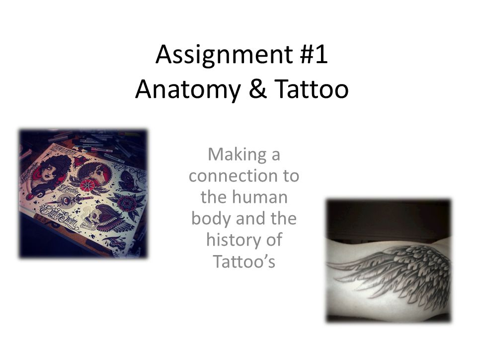 Assignment #1 Anatomy & Tattoo Making a connection to the human body and the history of Tattoo's