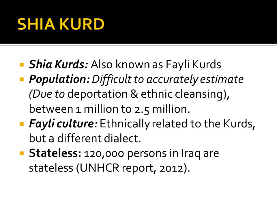  Shia Kurds: Also known as Fayli Kurds  Population: Difficult to accurately estimate (Due to deportation & ethnic cleansing), between 1 million to 2