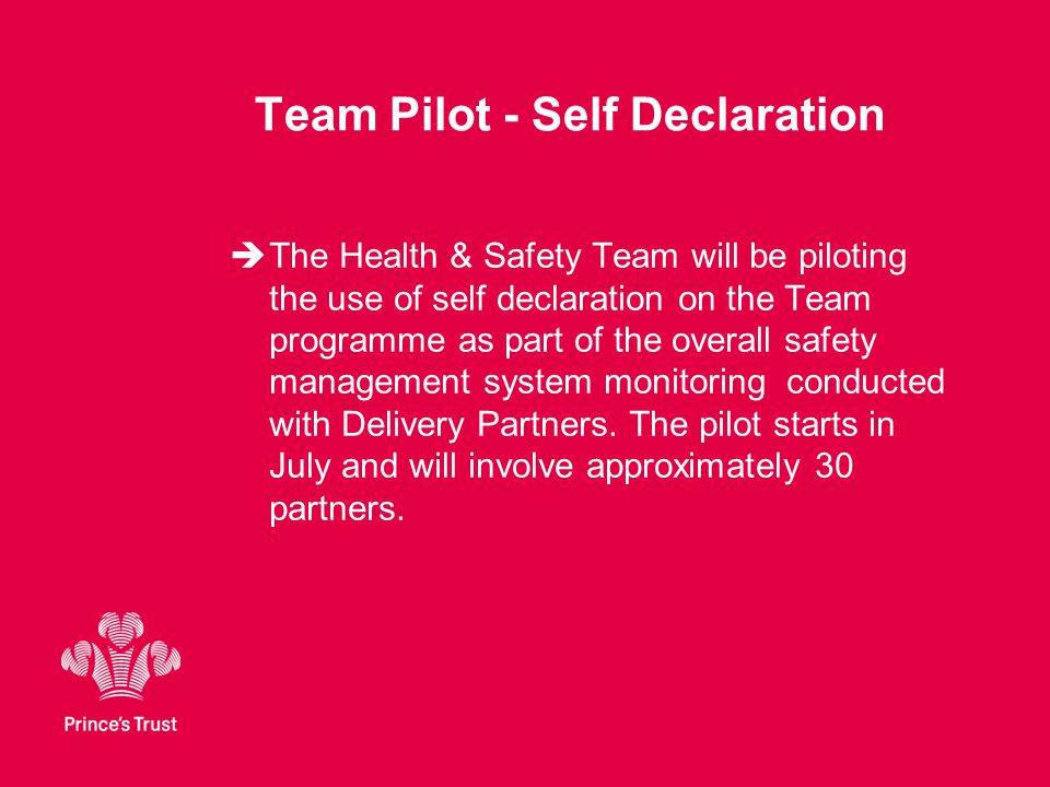 Team Pilot - Self Declaration  The Health & Safety Team will be piloting the use of self declaration on the Team programme as part of the overall safety management system monitoring conducted with Delivery Partners.