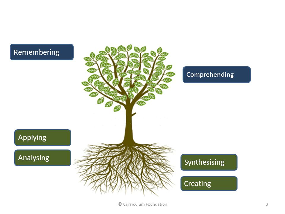 Creating Synthesising Analysing Applying Remembering Comprehending © Curriculum Foundation3