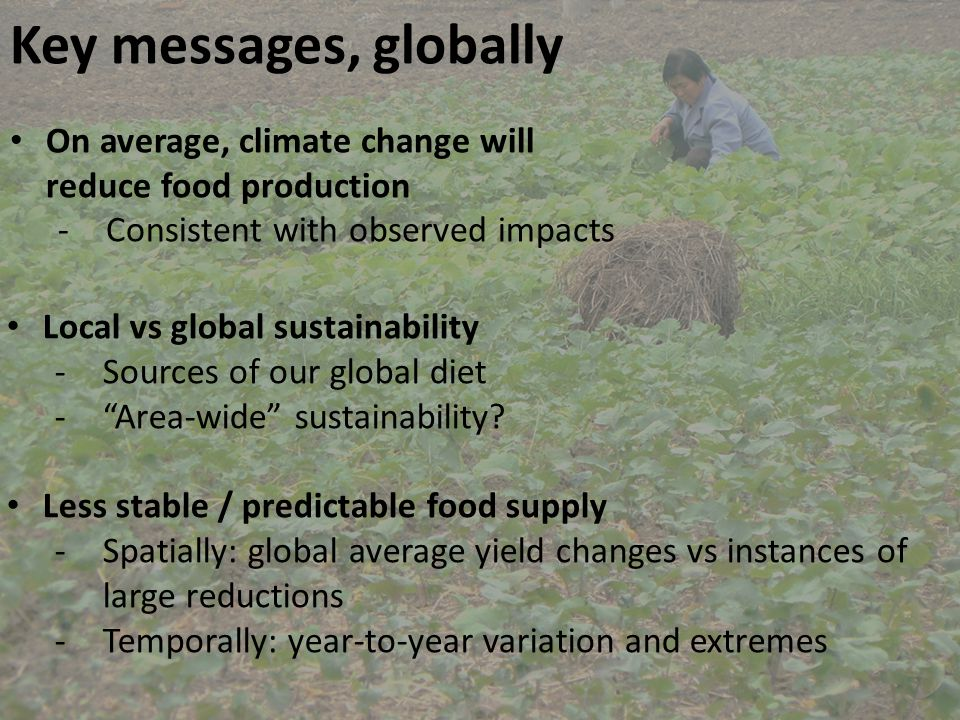 Key messages, globally On average, climate change will reduce food production -Consistent with observed impacts Local vs global sustainability -Sources of our global diet - Area-wide sustainability.