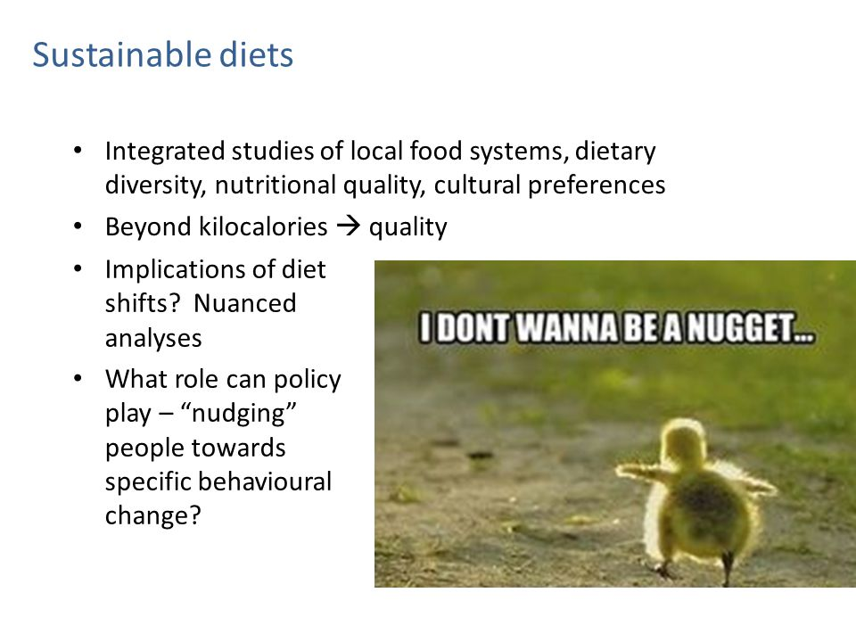 Sustainable diets Integrated studies of local food systems, dietary diversity, nutritional quality, cultural preferences Beyond kilocalories  quality Implications of diet shifts.
