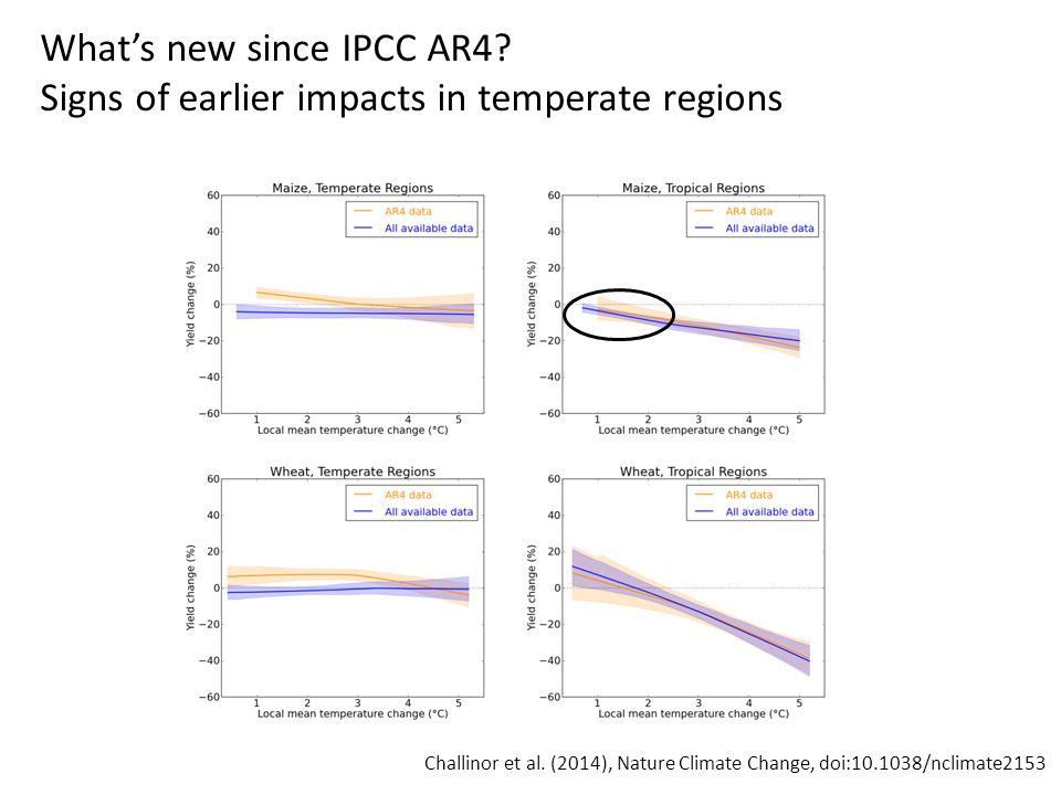 To 2090, ensemble mean of 14 climate models Thornton et al.
