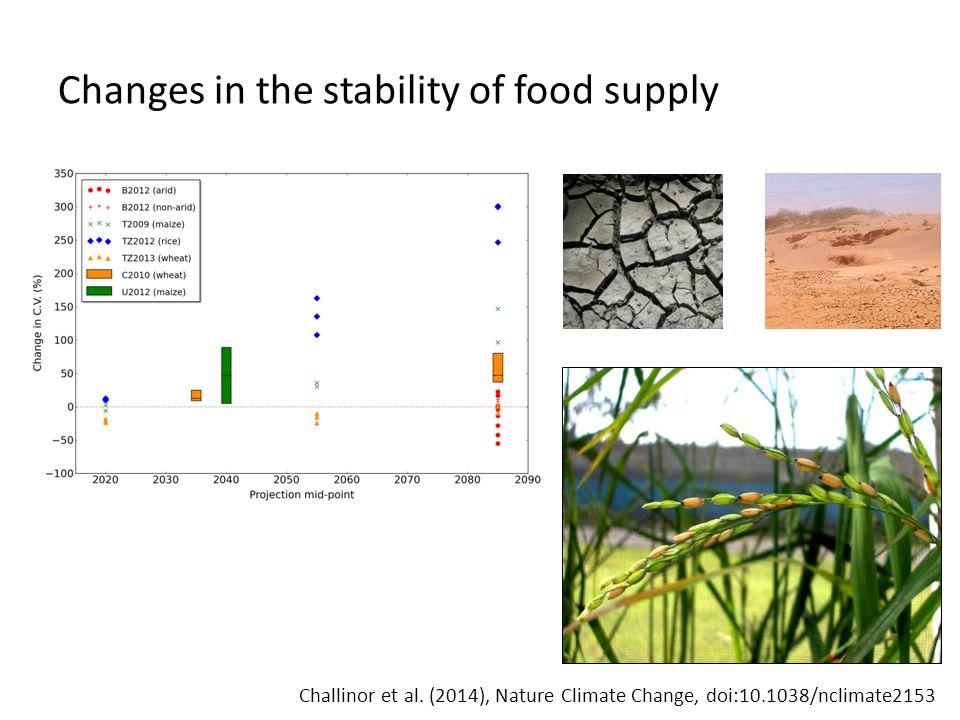Food price volatility
