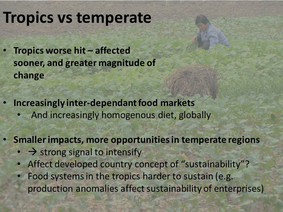 Early warning and adaptation tools Kathryn Nicklin Food forecasting Observed crop failure Simulated crop failure Vermeulen et al., 2013, Addressing uncertainty in adaptation planning for agriculture , PNAS, 110, 8357