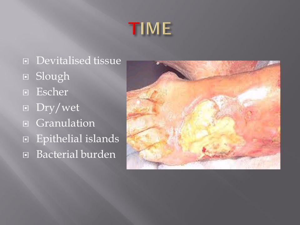  Devitalised tissue  Slough  Escher  Dry/wet  Granulation  Epithelial islands  Bacterial burden