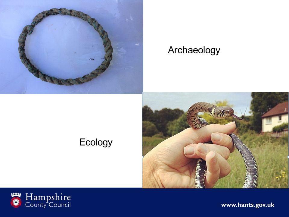 Archaeology Ecology