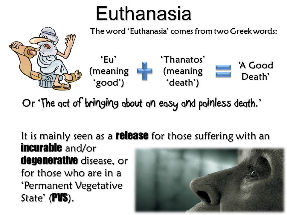 Euthanasia The word 'Euthanasia' comes from two Greek words: Or ' The act of bringing about an easy and painless death.' It is mainly seen as a releas