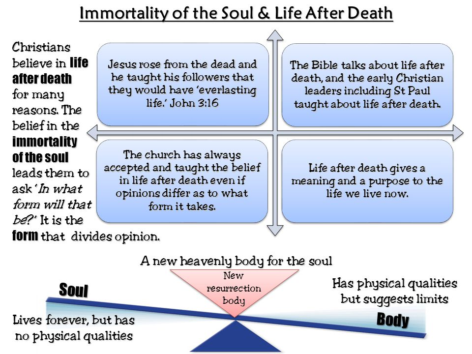 essay on life after death Life after death - islam and christianity sign up to view the whole essay and download the pdf for anytime access on your computer, tablet or smartphone.