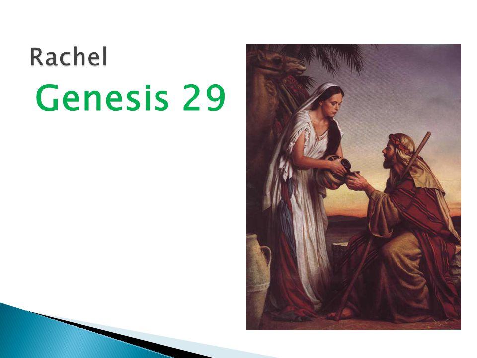 Genesis 29