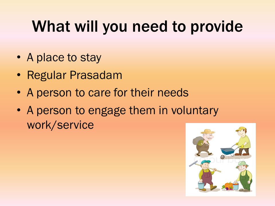 What will you need to provide A place to stay Regular Prasadam A person to care for their needs A person to engage them in voluntary work/service