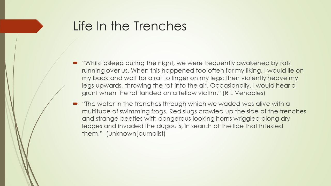 Life In the Trenches  Whilst asleep during the night, we were frequently awakened by rats running over us.