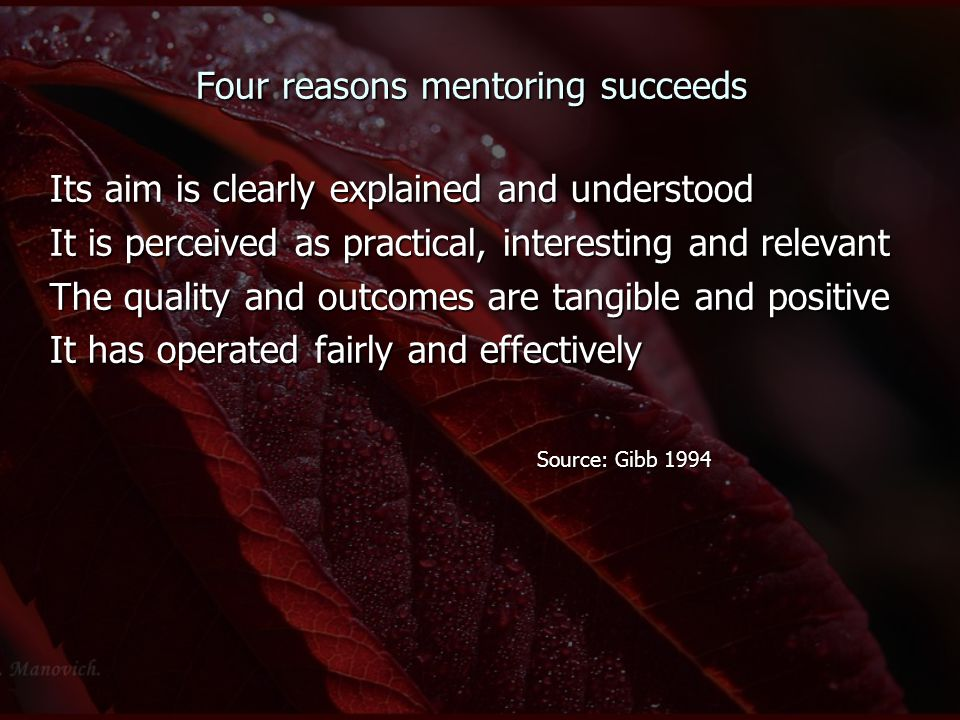 Four reasons mentoring succeeds Its aim is clearly explained and understood It is perceived as practical, interesting and relevant The quality and out