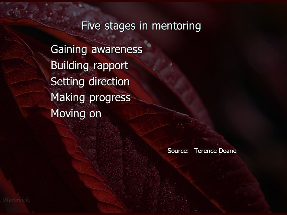 Five stages in mentoring Gaining awareness Building rapport Setting direction Making progress Moving on Source: Terence Deane Source: Terence Deane