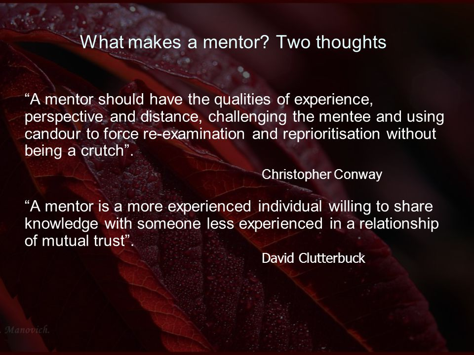 What makes a mentor.