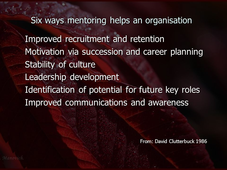 Six ways mentoring helps an organisation Improved recruitment and retention Motivation via succession and career planning Stability of culture Leaders