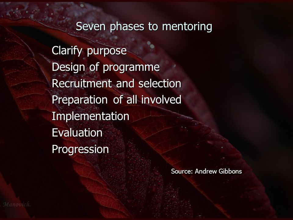 Seven phases to mentoring Clarify purpose Design of programme Recruitment and selection Preparation of all involved ImplementationEvaluationProgressio