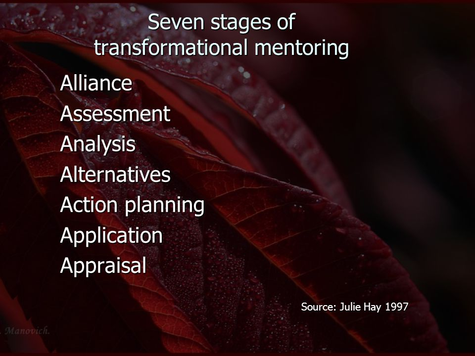 Seven stages of transformational mentoring AllianceAssessmentAnalysisAlternatives Action planning ApplicationAppraisal Source: Julie Hay 1997 Source: Julie Hay 1997