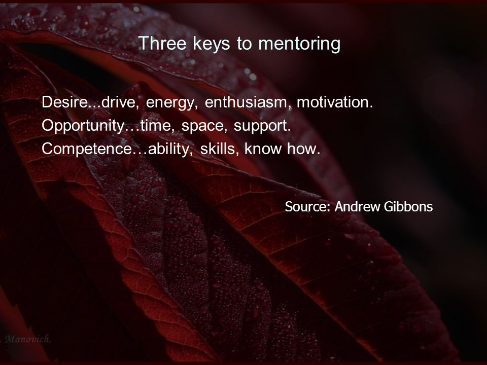 Three keys to mentoring Desire...drive, energy, enthusiasm, motivation. Opportunity…time, space, support. Competence…ability, skills, know how. Source