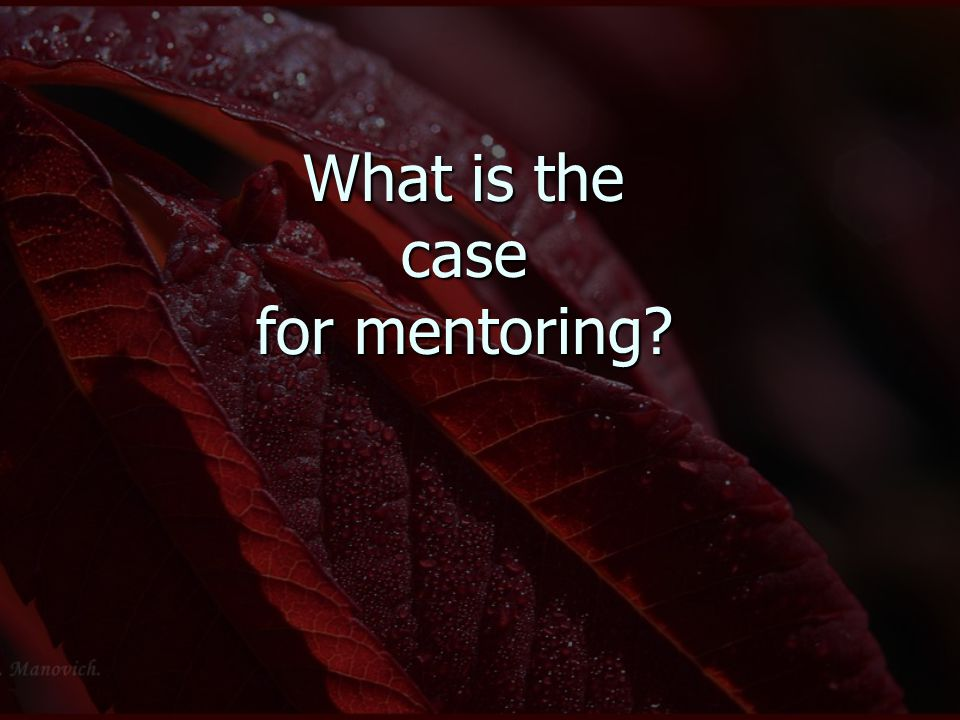 What is the case for mentoring?