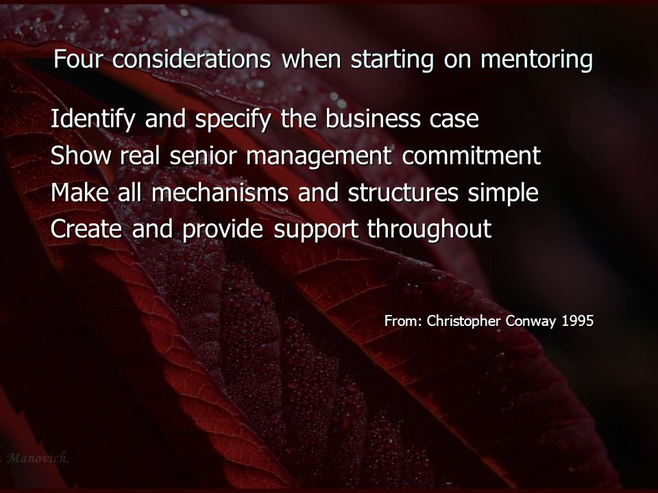 Four considerations when starting on mentoring Identify and specify the business case Show real senior management commitment Make all mechanisms and structures simple Create and provide support throughout From: Christopher Conway 1995 From: Christopher Conway 1995
