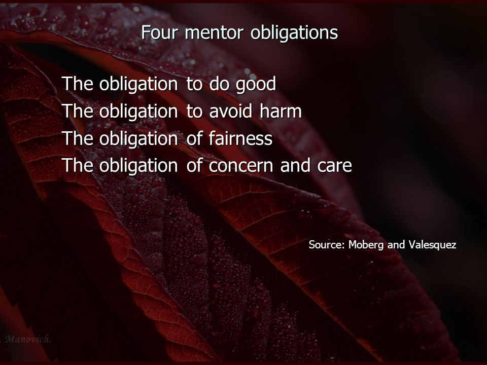 Four mentor obligations The obligation to do good The obligation to avoid harm The obligation of fairness The obligation of concern and care Source: M