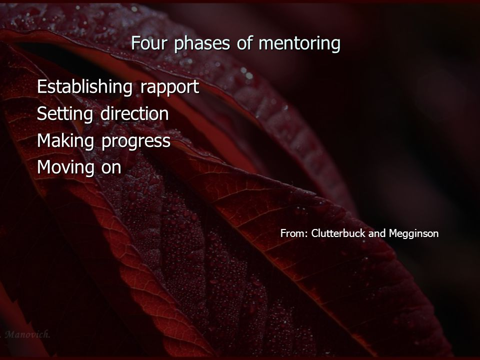 Four phases of mentoring Establishing rapport Setting direction Making progress Moving on From: Clutterbuck and Megginson From: Clutterbuck and Meggin