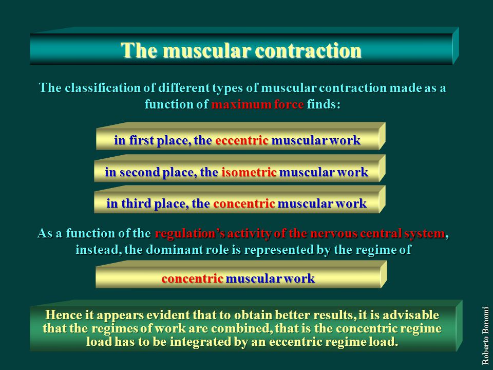 The classification of different types of muscular contraction made as a function of maximum force finds: in first place, the eccentric muscular work i