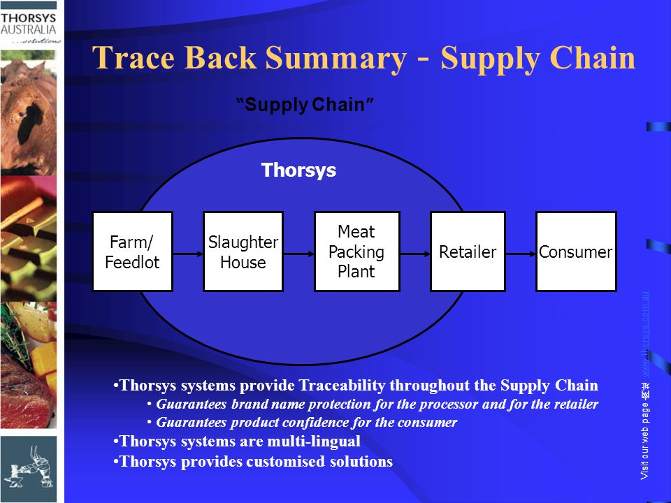 "Trace Back Summary - Supply Chain "" Supply Chain "" Thorsys Farm/ Feedlot Slaughter House Meat Packing Plant RetailerConsumer Thorsys systems provide T"