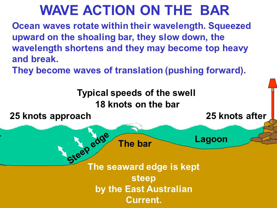 Ocean waves rotate within their wavelength. Squeezed upward on the shoaling bar, they slow down, the wavelength shortens and they may become top heavy
