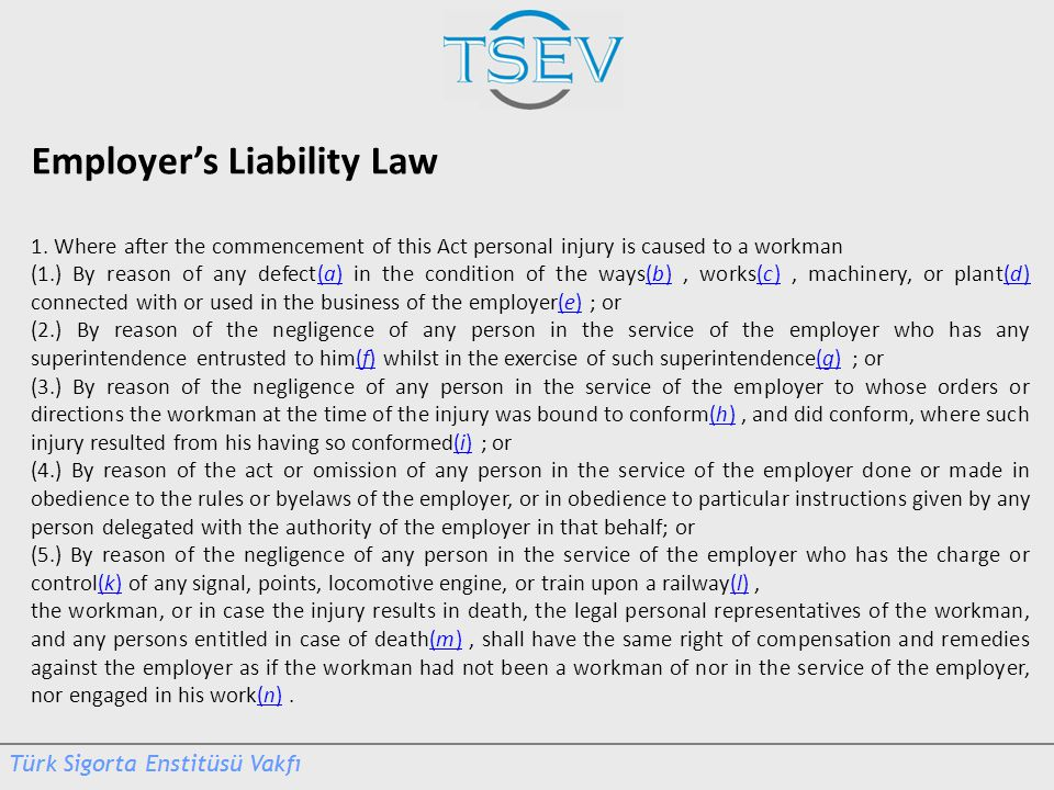 Employer's Liability Law 1. Where after the commencement of this Act personal injury is caused to a workman (1.) By reason of any defect(a) in the con