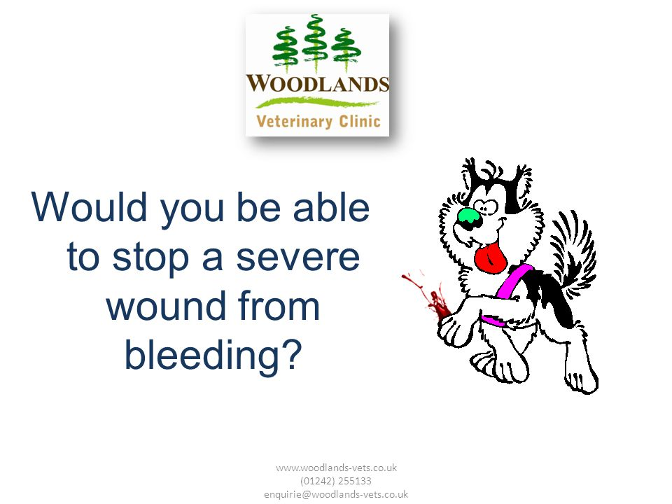 Would you be able to stop a severe wound from bleeding.
