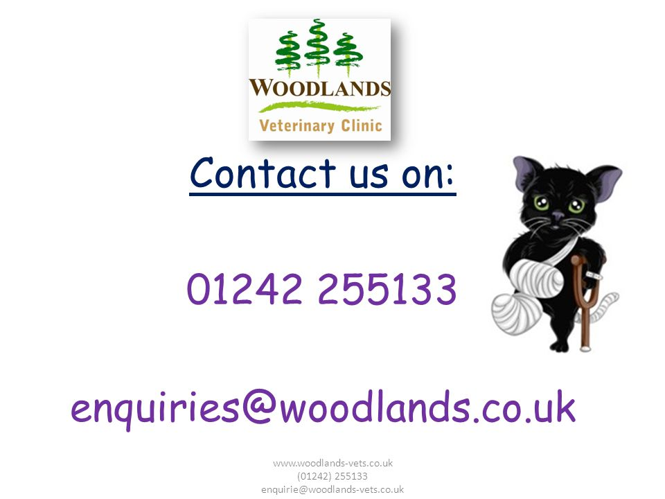 Contact us on: 01242 255133 enquiries@woodlands.co.uk www.woodlands-vets.co.uk (01242) 255133 enquirie@woodlands-vets.co.uk
