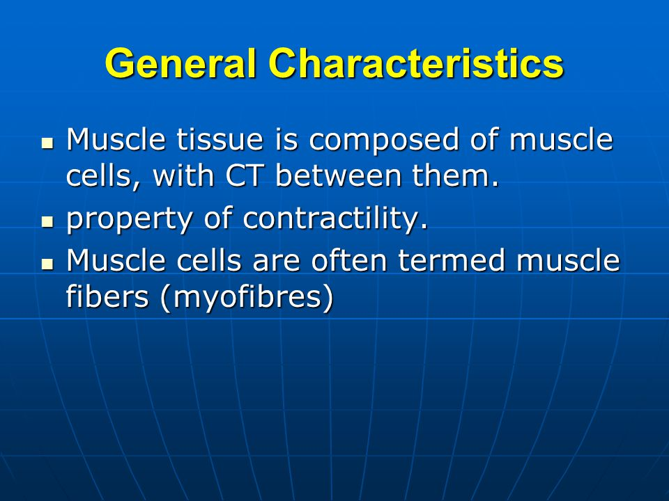 Overview of muscle tissue The myocytes is also called muscle fibers.