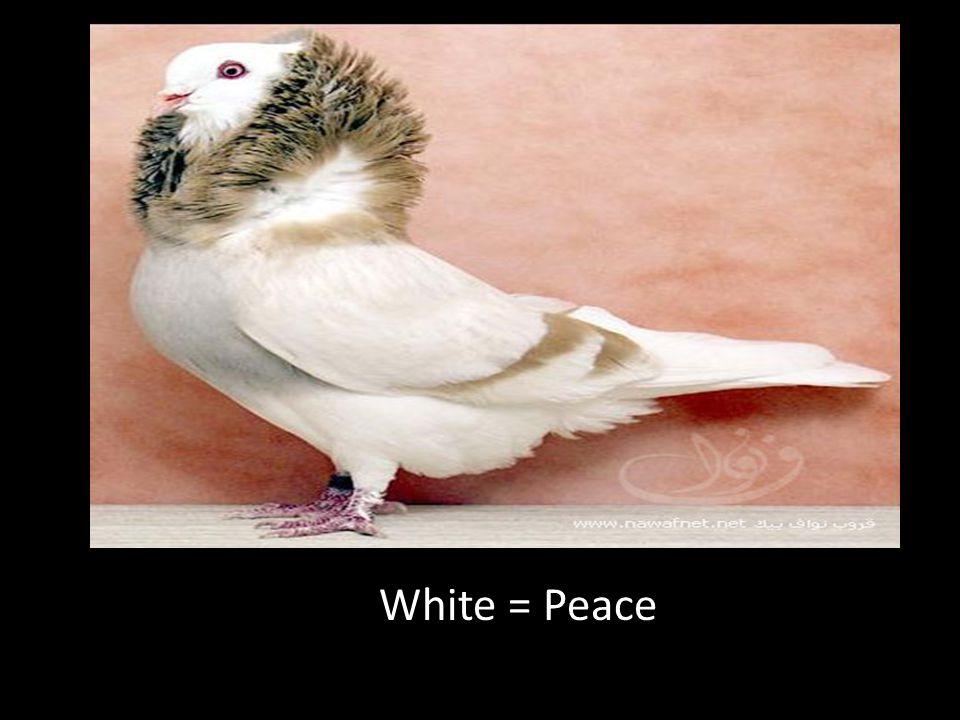 White = Peace