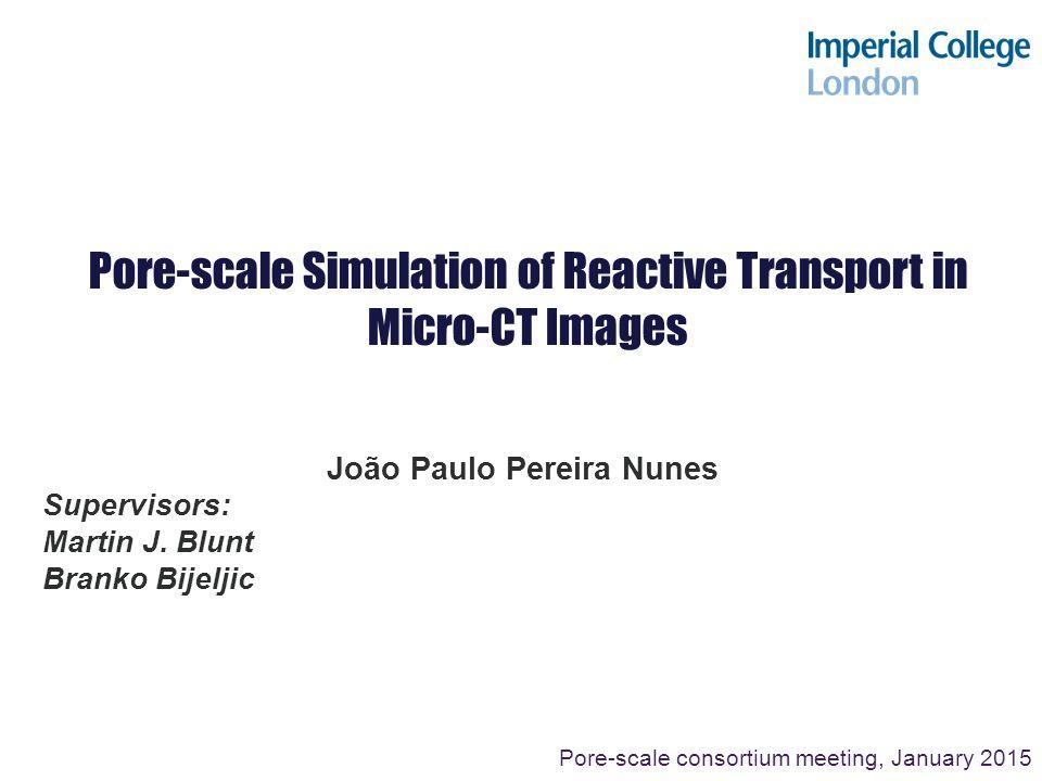 Pore-scale Simulation of Reactive Transport in Micro-CT Images João Paulo Pereira Nunes Supervisors: Martin J. Blunt Branko Bijeljic Pore-scale consor