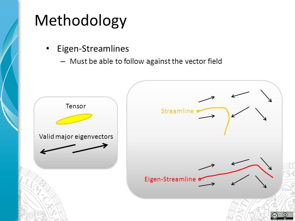 Methodology Eigen-Streamlines – Must be able to follow against the vector field Tensor Valid major eigenvectors Streamline Eigen-Streamline