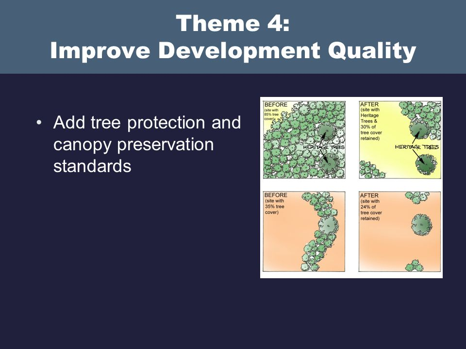 Theme 4: Improve Development Quality Add tree protection and canopy preservation standards