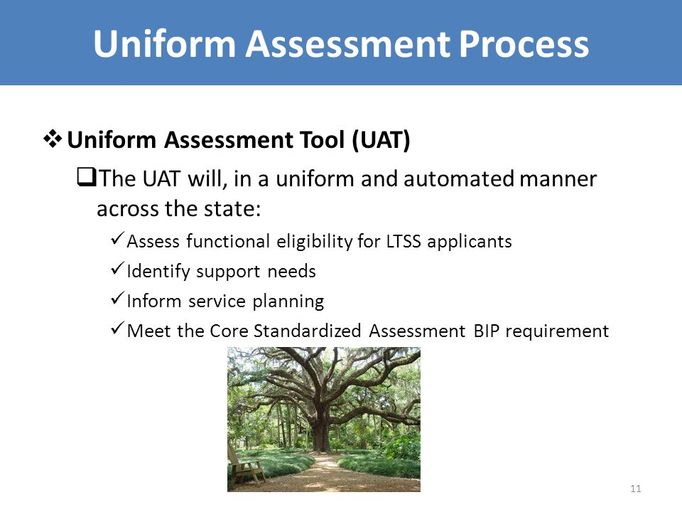 Uniform Assessment Process  Uniform Assessment Tool (UAT)  T he UAT will, in a uniform and automated manner across the state: Assess functional eligibility for LTSS applicants Identify support needs Inform service planning Meet the Core Standardized Assessment BIP requirement 11