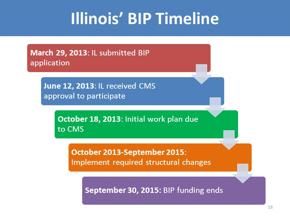 Illinois' BIP Timeline 16 March 29, 2013: IL submitted BIP application June 12, 2013: IL received CMS approval to participate October 18, 2013: Initial work plan due to CMS October 2013-September 2015: Implement required structural changes September 30, 2015: BIP funding ends