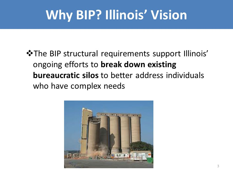 Why BIP? Illinois' Vision  The BIP structural requirements support Illinois' ongoing efforts to break down existing bureaucratic silos to better addr