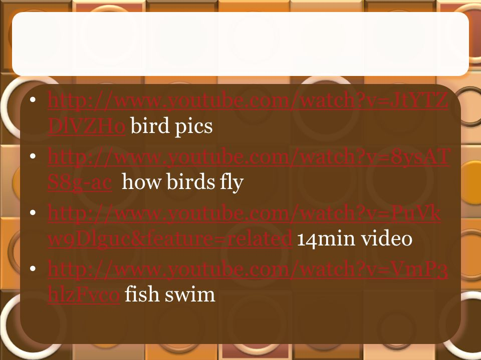 http://www.youtube.com/watch v=JtYTZ DlVZHo bird pics http://www.youtube.com/watch v=JtYTZ DlVZHo http://www.youtube.com/watch v=8ysAT S8g-ac how birds fly http://www.youtube.com/watch v=8ysAT S8g-ac http://www.youtube.com/watch v=PuVk w9Dlguc&feature=related 14min video http://www.youtube.com/watch v=PuVk w9Dlguc&feature=related http://www.youtube.com/watch v=VmP3 hlzFvco fish swim http://www.youtube.com/watch v=VmP3 hlzFvco