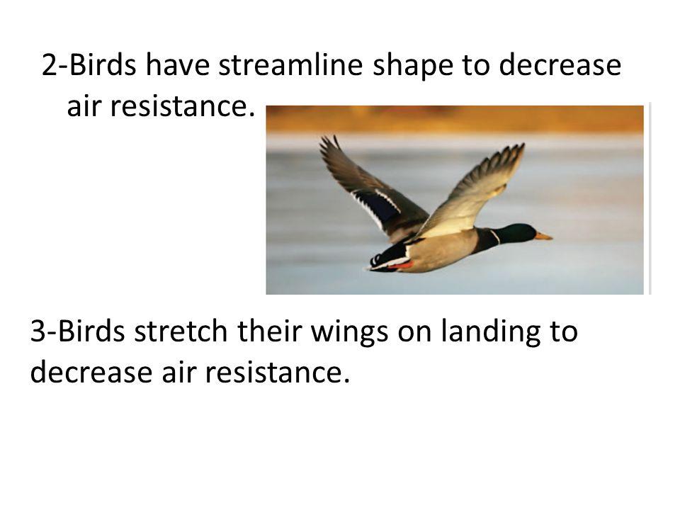 5-Modern cars have a streamline shape to decrease air resistance.