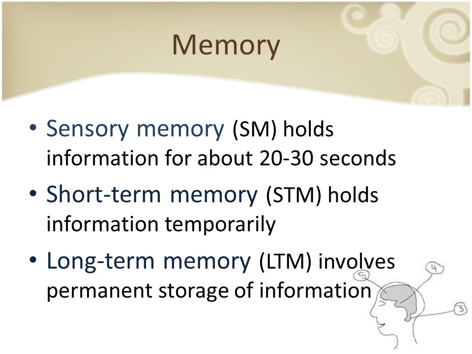 Memory Sensory memory (SM) holds information for about 20-30 seconds Short-term memory (STM) holds information temporarily Long-term memory (LTM) invo