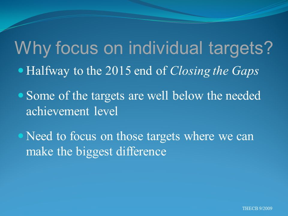Why focus on individual targets? Halfway to the 2015 end of Closing the Gaps Some of the targets are well below the needed achievement level Need to f