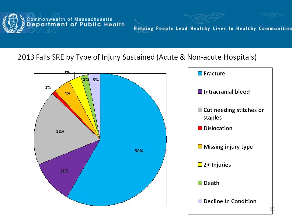 29 2013 Falls SRE by Type of Injury Sustained (Acute & Non-acute Hospitals)