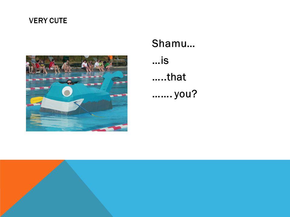 Shamu… …is …..that ……. you VERY CUTE