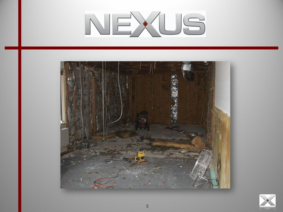 6 What does Nexus Do.
