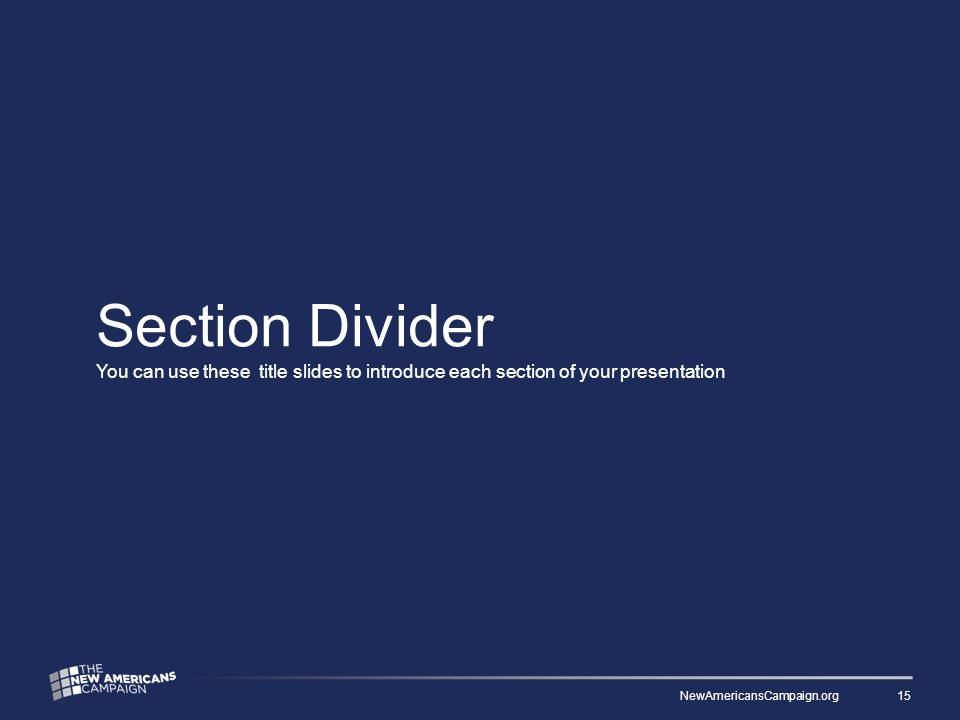 Section Divider You can use these title slides to introduce each section of your presentation NewAmericansCampaign.org 15